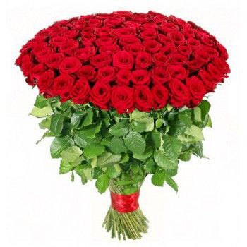 Bonaire flowers  -  100 Red Roses Flower Bouquet/Arrangement
