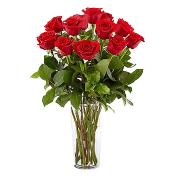 Saint Kitts And Nevis flowers  -  Composition of 12 roses Flower Delivery