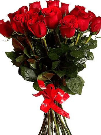 Anchovy flowers  -  18 Red Roses Flower Delivery