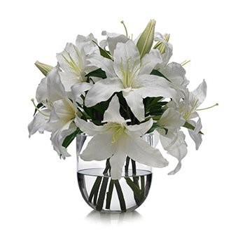 British Virgin Islands online Florist - Fresh Start Bouquet