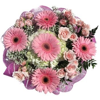 Mallow flowers  -  Pretty in Pastels Bouquet Flower Delivery