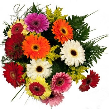 flowers  -  Gerbera Explosion Bouquet Baskets Delivery