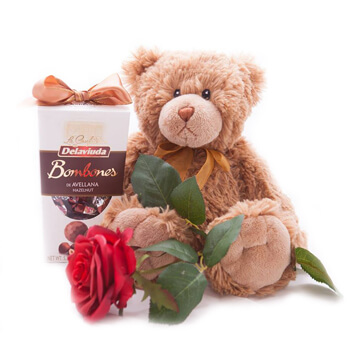 Italy flowers  -  Plush Moments Baskets Delivery
