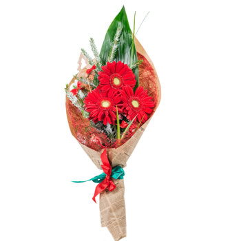 Luxembourg flowers  -  Red Holiday Baskets Delivery