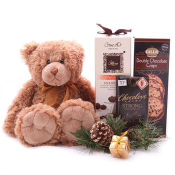 New Caledonia online Florist - Romantic Christmas Bear Set Bouquet