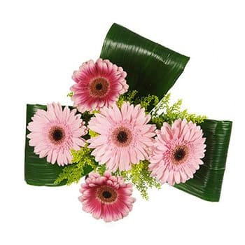 British Virgin Islands online Florist - A Touch of Pink Bouquet