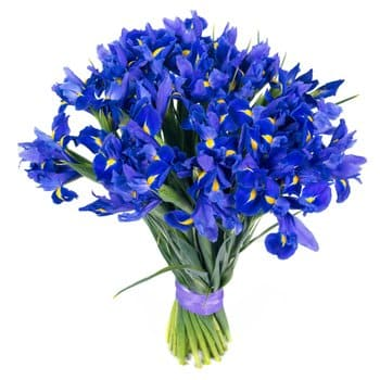 Makueni Boma flowers  -  Angelic Shine Flower Delivery