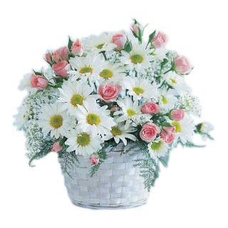 Oslo flowers  -  Pure Blooms Flower Basket Delivery