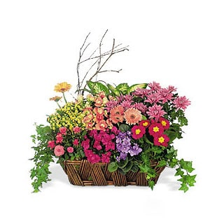 Oslo online Florist - A Chorus of Flowers Basket Bouquet
