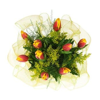 British Virgin Islands flowers  -  Breath of Spring Flower Bouquet/Arrangement