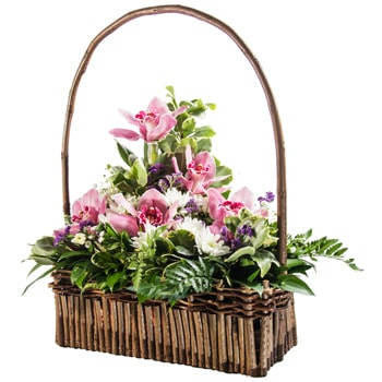 Norway flowers  -  Kindness Baskets Delivery