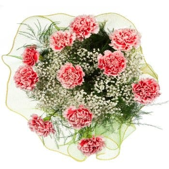 La Besiddelse online Blomsterhandler - Carnival of Carnations Bouquet Buket