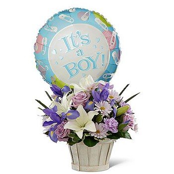Los Angeles flowers  -  Celebrate Your Son Baskets Delivery
