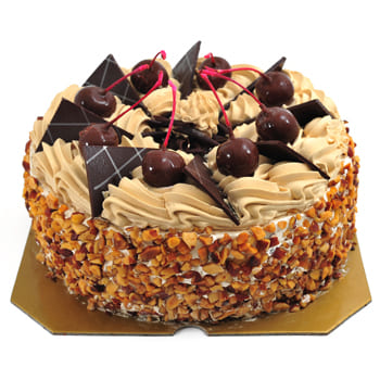 At-Bashi flowers  -  Chocolate Blowout Cake Flower Delivery