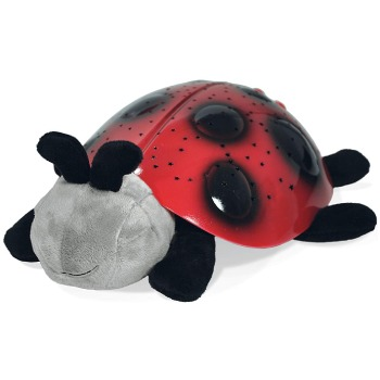 Raleigh blomster- Sleepy Time Lady Bug kurver Levering