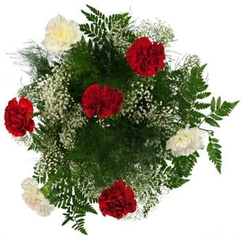 Pakistan blomster- Cloud of Carnations Bouquet Blomst Levering