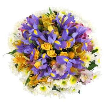 Norway flowers  -  Contrasting Colors Flower Delivery