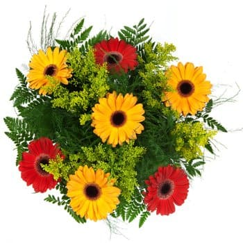 Bagan Ajam flowers  -  Daisies Delight Bouquet Flower Delivery