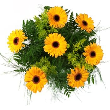 Anse Royale bloemen bloemist- Darling Daises in Yellow Bouquet Boeket/bloemstuk