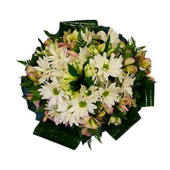 Seychelles flowers  -  Dreamer Bouquet Flower Delivery