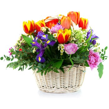 Norway flowers  -  Vibrant Baskets Delivery
