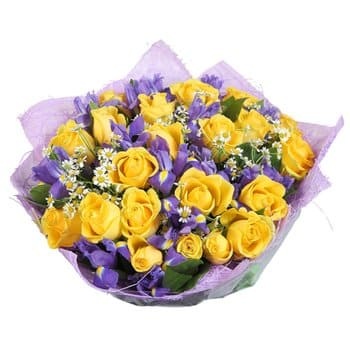 Luanda flowers  -  Fantasy Garden Flower Delivery
