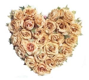 Cancún online Florist - Tender Rose Heart Bouquet
