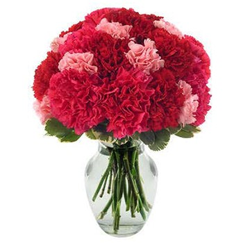 Los Angeles flowers  -  Hot Carnations Baskets Delivery