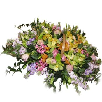 Acacías flowers  -  Springtime Delight Bouquet Flower Delivery