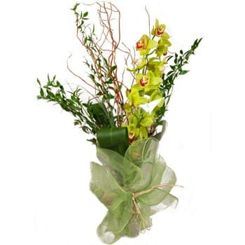 British Virgin Islands online Florist - Orchid Tower Display Bouquet