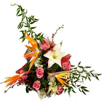 flores de Bazsi- Exotic Delights Floral Display Flor Entrega