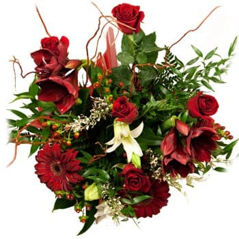 San Estanislao blommor- Flames of Passion Bouquet Blomma Leverans