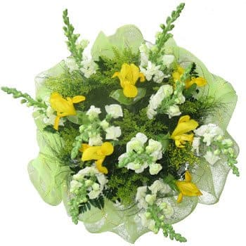 Azerbaijan, Spain flowers  -  Sunny Spring Bouquet Baskets Delivery
