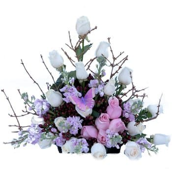 Saint Kitts And Nevis flowers  -  Say Anything Bouquet Flower Delivery