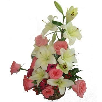 Alboraia flowers  -  Jewels and Ivory Bouquet Flower Delivery