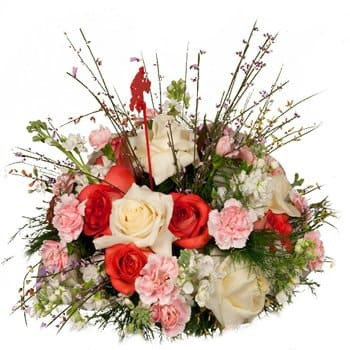 Bordeaux flowers  -  Friendship Love and Beauty Display Flower Delivery