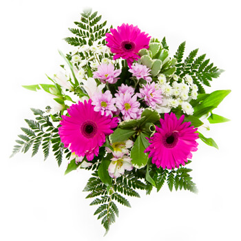 Badamdar flowers  -  Morning Magic Flower Delivery