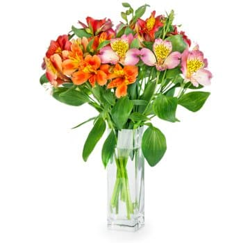 Bordeaux flowers  -  Opulence Anytime Flower Delivery