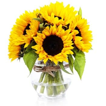 Kapshagay flowers  -  Peace Of Mind Flower Delivery