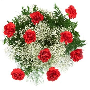 Seychelles flowers  -  Perfect Red Carnations Flower Bouquet/Arrangement