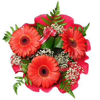 Moscow flowers  -  Red Romance Baskets Delivery