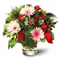 Agat Village flowers  -  Roses with Gerbera Daisies Flower Delivery