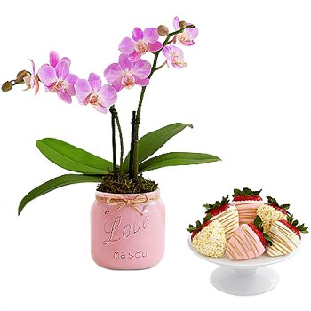 Los Angeles blomster- Forseglet med Love Orchid Bundle kurver Levering