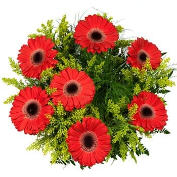 Abomey flowers  -  Splash of Spring Bouquet Flower Delivery