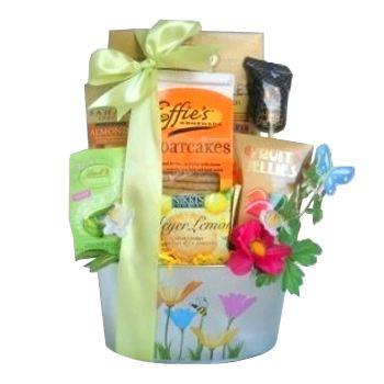 Houston flowers  -  Spring Delights Gift Basket Baskets Delivery