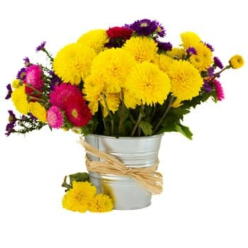 Saint Kitts And Nevis flowers  -  Spring Garden Flower Delivery