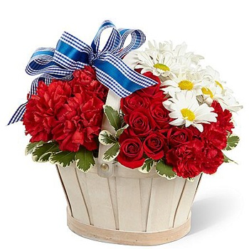 Arlington flowers  -  Spring Time Boost Baskets Delivery