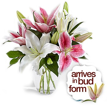 Arlington flowers  -  Stylistically Oriented Bouquet Baskets Delivery