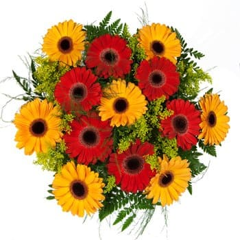 Saint Kitts And Nevis online Florist - Sunshine and Springtime Bouquet Bouquet