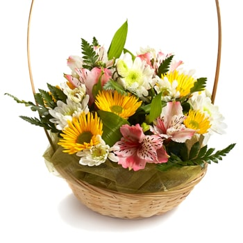 Norway flowers  -  Sweetness Baskets Delivery